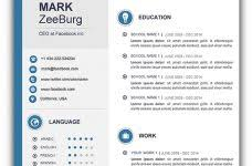 Resume Examples Word Doc Free Resume Template Word Resume Template And Professional Resume