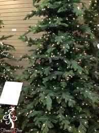 slim spruce tree slim spruce tree