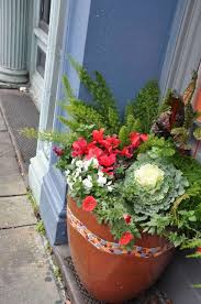 Plants For Winter Window Boxes - frozen gardens give us a chance to rethink and plan ahead