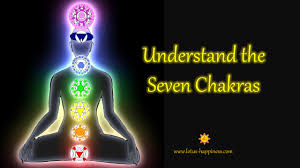 splenic chakra understand the seven chakras lotus happiness