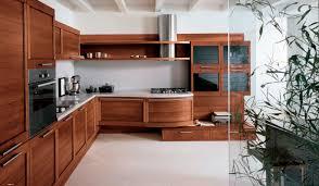 contemporary modern kitchen design ideas kitchen cool solid wood kitchens design ideas contemporary on