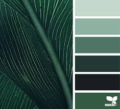 color nature design seeds