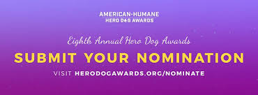 Operation Provide Comfort Awards American Humane Hero Dog Awards Home Facebook