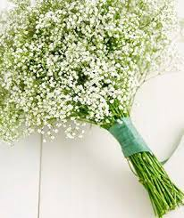 baby s breath turn supermarket flowers into beautiful bouquets simple mobile