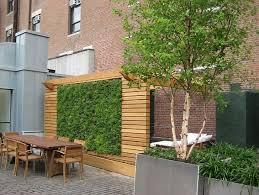Garden Privacy Ideas Gardening Patio Privacy Ideas 12 Cool Garden Privacy Ideas Design