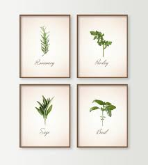kitchen prints set of 4 herbs kitchen wall decor dining room