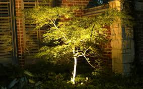 Dallas Landscape Lighting Moonlighting Tree Lighting Dallas Landscape Lighting
