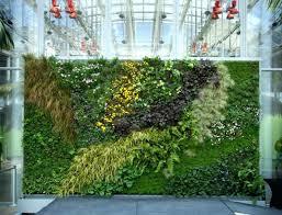 creative ways to plant a vertical garden how make living wall rain