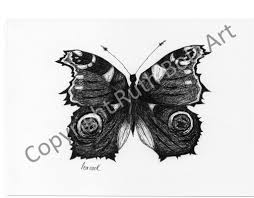 butterfly prints u2013 ruth bott art