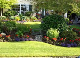 Landscaping Ideas For Large Backyards by Front Yard Landscaping Front Yards Yards And Yard Landscaping