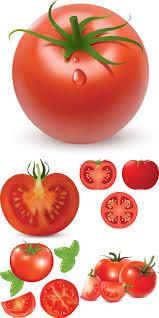 vegetables free stock vector art u0026 illustrations eps ai svg