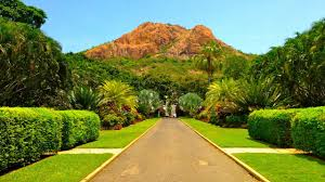 wollongong botanic gardens townsville study abroad in townsville australia tean study abroad