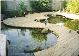 outdoor and garden aimple pond fish ideas with awesome zen garden