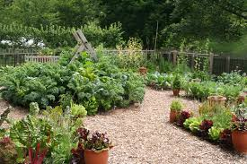 Planning A Square Foot Garden With Vegetables Fafardsmart Vegetable Garden Resolutions U2014plan To Succeed