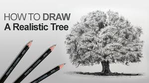 how to draw a tree realistic