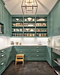light wood kitchen pantry cabinet 20 kitchen pantry ideas enlarging your space hustopia
