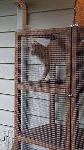 catio diy catio make your own outdoor cat enclosures jackson