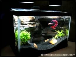Tank Aquascape Dramatic Aquascapes Diy Aquarium Background Betta Paradise