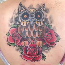 owl with roses outline