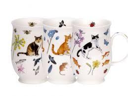 china designs cat mug ginger tortie black white dunoon fine bone china