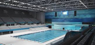 penetron helps hungary stage world swimming championships