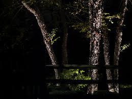 Low Voltage Landscape Lights Kit by Lighting Design Plan Low Voltage Outdoor Lighting Design Low