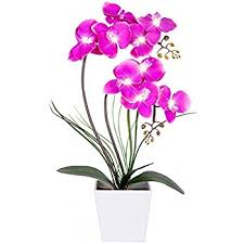 faux orchids decorative synthetic purple silk artificial