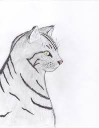 simple sketches of cats information