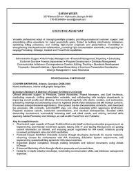 resume assistance professional summary exle for resume