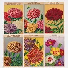 cheap seed packets 72 vintage flower seed packet labels