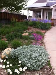astonishing landscaping ideas for front yard north texas images