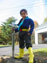 Dragon Ball Halloween Costumes Holiday Letter 2003