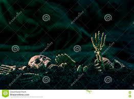 halloween background family skull and skeleton on ground dry soil dark background concept ha