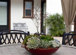 How To Make A Succulent Planter How To Make A Succulent Dish Garden Step By Step Tutorial