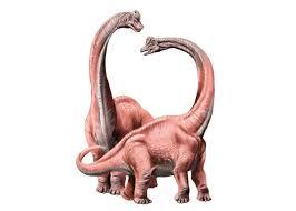 dino fun facts dinosaur museum
