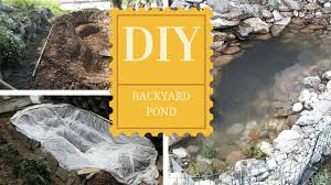a small backyard pond thehomesteadingboards com