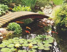 Backyard Fish Pond Ideas Backyard Fish Pond Ideas Luxury With Photo Of Backyard Fish
