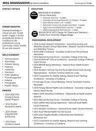 Cv Builder by Download My Professional Resume Haadyaooverbayresort Com