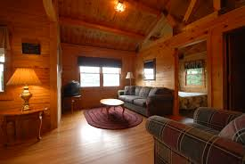 log cabin cabinorganic the joys and challenges of interior design