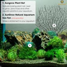 amazon com create beautiful moss wall with luffy plant net
