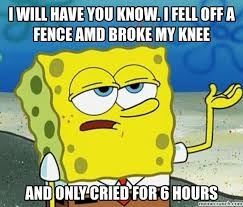 Amd Meme - will have you know i fell off a fence amd broke my knee