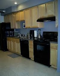 Good Paint For Kitchen Cabinets Kitchen Wall Colors Best Home Interior And Architecture Design
