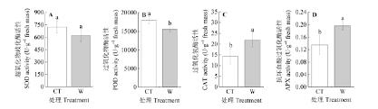 Canap茅 2m 野外模拟增温对亚热带杉木叶片膜脂过氧化及保护酶活性的影响