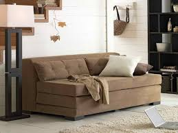 Nice Sleeper Sofa Cute Laptop On Nice Fur Rug Front Interesting Couch On White Floor