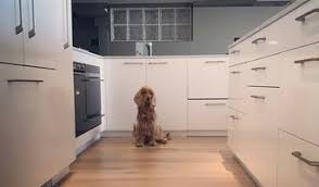Kitchen Cabinet Makers Melbourne Best Joinery U0026 Cabinet Makers In Melbourne Houzz