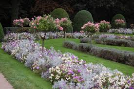 rose garden ideas garden design ideas