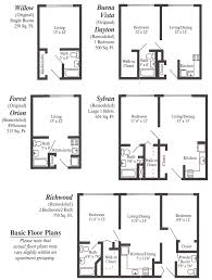 apartment layout ideas