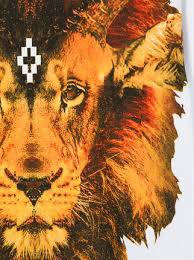lion print marcelo burlon county of milan kids lion print hoodie 243 buy