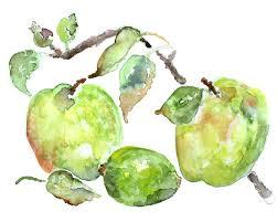 Apple Green Paint Kitchen - green apple print green kitchen wall decor watercolor print