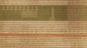 carpet tiles commercial carpet tile buyout custom home interiors